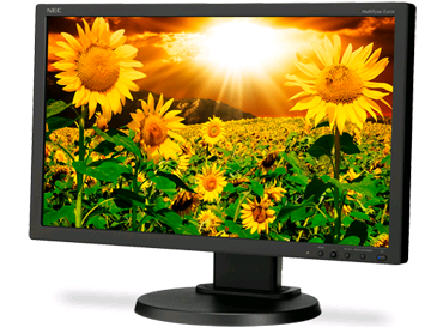 NEC Multisync E201W-Bk, 20W Led Backlit Lcd Monito